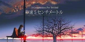 5cm_per_second_36